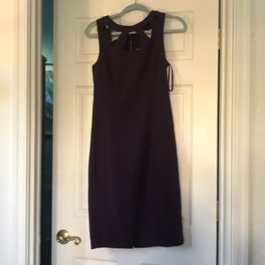 Eliza J Cocktail Dress Sheath NWT Slvls Purple 8